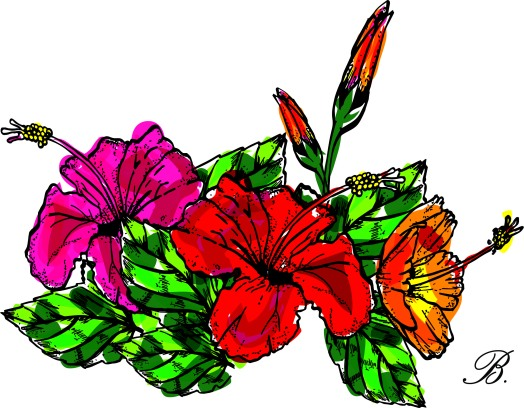 hibi-bush-colour