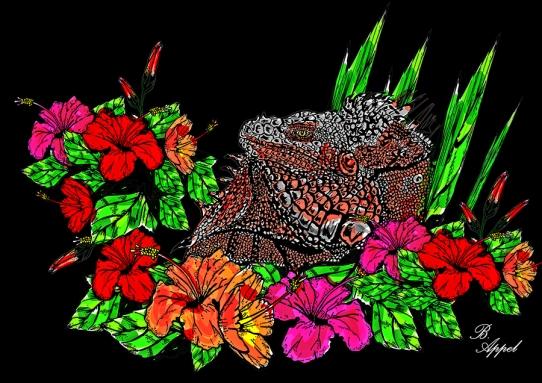 iguana-blk