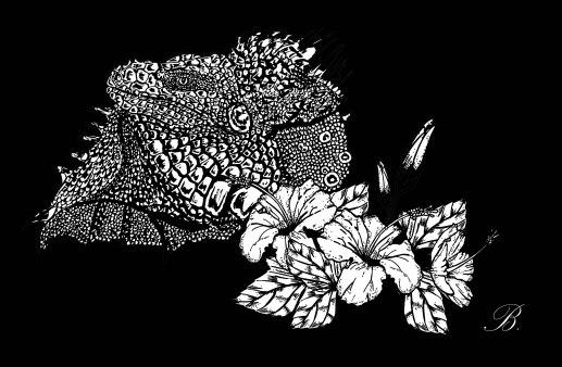 iguana-mono-raw