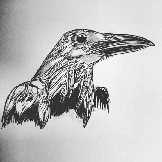 raven-layerfill