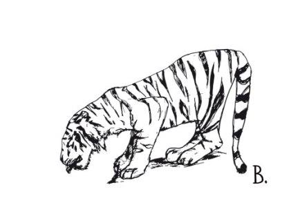tiger-drink-ink-web