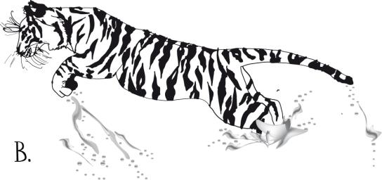 tigerjumpeditweb